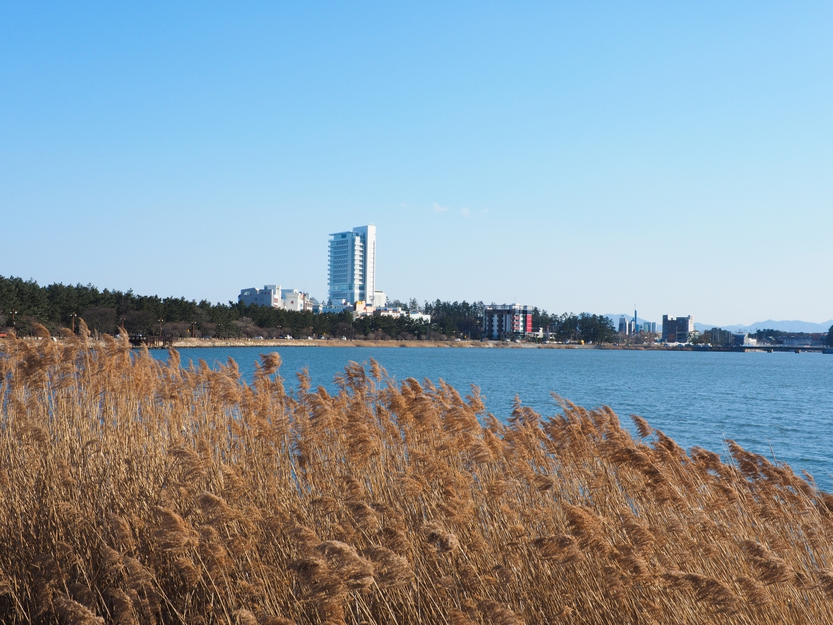 Hyundai Tower